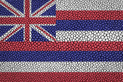 Hawaii Flag Royalty Free Stock Photo