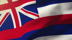 Hawaii flag waving in the wind. Looping sun rises. Hawaii flag waving in the wind. Loops sun rises style stock footage