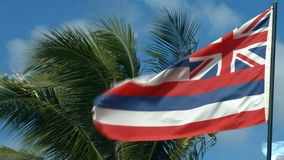 Hawaii Flag Waving In The Wind. Flag Of The State Of Hawaii Usa stock video