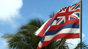 Hawaii Flag Waving In The Wind. Flag Of The State Of Hawaii Usa stock footage