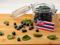 Hawaii flag on a wooden plank with blueberries on white. Hawaii flag on a wooden plank with blueberries stock photography