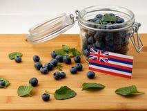 Hawaii flagga på en träplanka med blåbär på vit Arkivbild