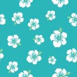 Hawaii flowers texture Royalty Free Stock Photos