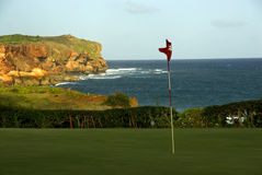 Hawaii Golf Course. A view of a golf course with ocean in the background royalty free stock image