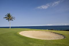 Hawaii Golf Course Royalty Free Stock Photo