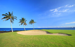 Hawaii Golf Course Royalty Free Stock Photos