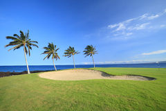 Hawaii Golf Course Stock Image