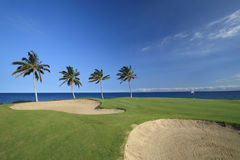 Hawaii Golf Course Stock Images