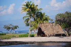 Hawaii-große Insel-Küste Lizenzfreie Stockfotos