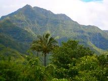 Hawaii himmel Arkivbild