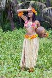 Hawaii hula dancer. With coconut royalty free stock image