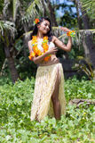 Hawaii hula dancer Royalty Free Stock Image