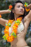 Hawaii hula dancer Royalty Free Stock Images