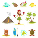 Hawaii icons and girl vector illustration. Stock Image