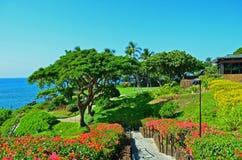 Hawaii, isla grande Foto de archivo