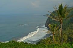 Hawaii, isla grande Fotografía de archivo libre de regalías
