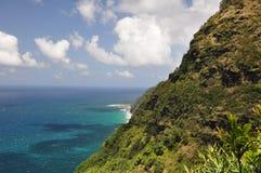 hawaii kalalaukauai trail fotografering för bildbyråer