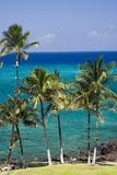 Hawaii Kona Beach Royalty Free Stock Photography
