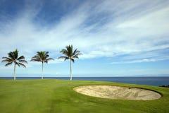 Hawaii kurs golfa, obraz royalty free