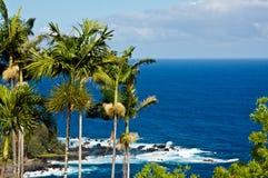 hawaii laupahoehoepunkt Arkivbild