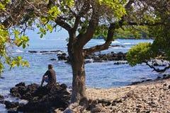 Hawaii man beach Stock Photography