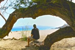 Hawaii man tree. Man sitting on a branch with tree framing the beautiful Pacific Ocean in Hawaii royalty free stock image
