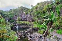 hawaii maui ohio pools sakrala sju Royaltyfria Bilder