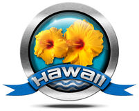 Hawaii - Metal Icon with Hibiscus Stock Image