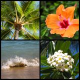 Hawaii Montage Royalty Free Stock Images