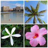 Hawaii Montage Stock Images