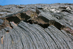 Hawaii Mottled Lava. Stock Images