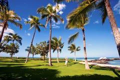 Hawaii, Oahu imagen de archivo