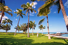 hawaii Oahu fotografia stock