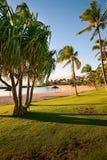 Hawaii, Oahu Stock Image