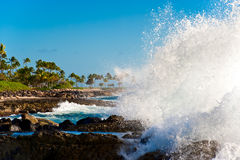 Hawaii, Oahu Royalty Free Stock Images