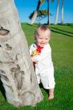 hawaii oahu Fotografering för Bildbyråer