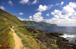 hawaii oahu royaltyfri bild