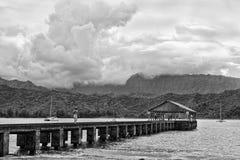 Hawaii Pardise en blanco y negro Fotos de archivo libres de regalías