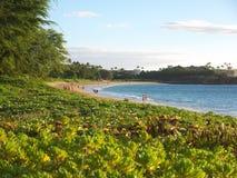 hawaii plażowy kaanapali Maui Fotografia Royalty Free