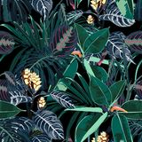 Hawaii print seamless pattern. Beautiful artistic summer tropical print with exotic forest plants. Dark navy blue royalty free illustration