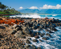 Hawaii's big island with rocks and waves (P) Royalty Free Stock Photo