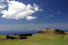 hawaii sąsiednie ranczo z oceanem Fotografia Royalty Free