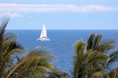 Free Hawaii Sails Stock Photo - 6024290