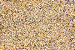 Hawaii Sand texture detail Royalty Free Stock Photos