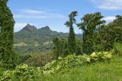 hawaii scenisk sikt Arkivfoton