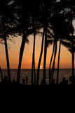 hawaii solnedgång Royaltyfri Bild