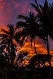 Hawaii soluppgång Arkivfoton
