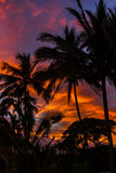Hawaii-Sonnenaufgang Stockfotos