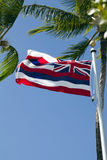 Hawaii state flag on pole with palm trees. Hawaii state flag seen from low angle on pole blue sky stock image