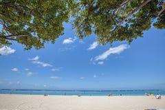 Hawaii-Strand Stockbild